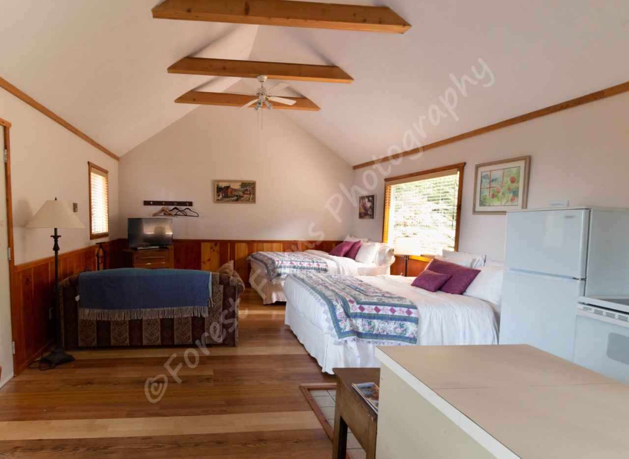 surf-lodge-cabin-19-dp-002